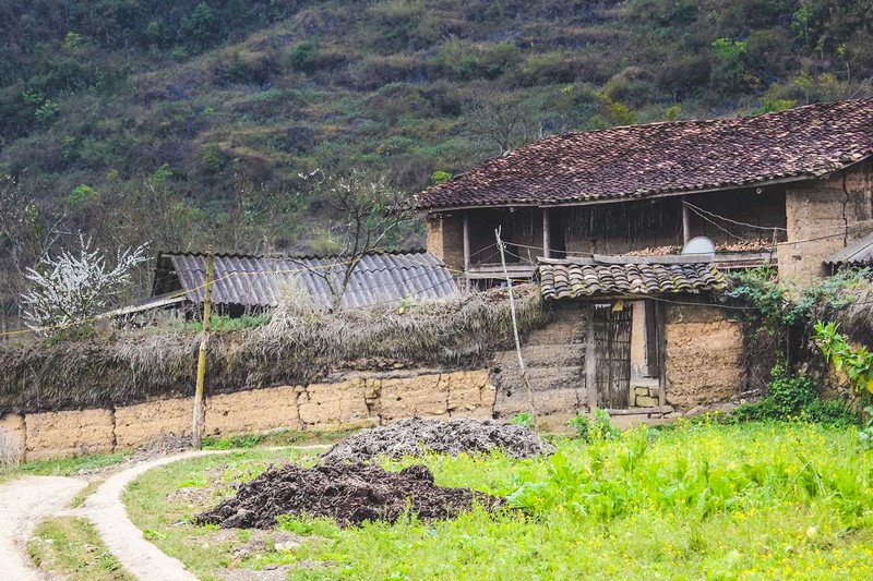 Wanderlust Tips Magazine   Ever wonder what coffee from the northern tip of Vietnam tastes like?