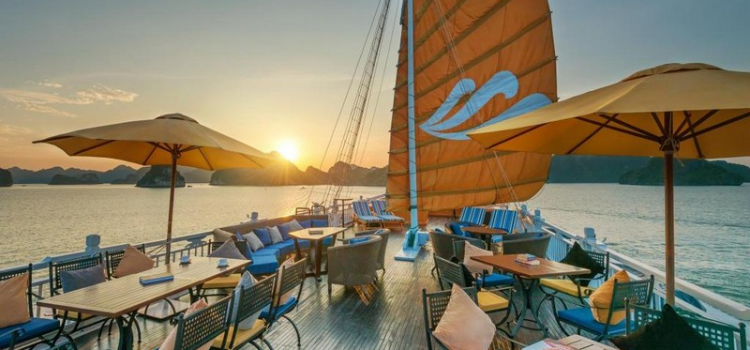 New cruise line joins Paradise group