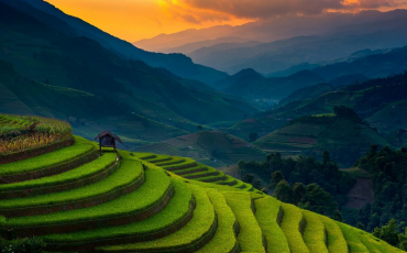 Wanderlust Tips Magazine | Golden waves on the terraces in Mu Cang Chai