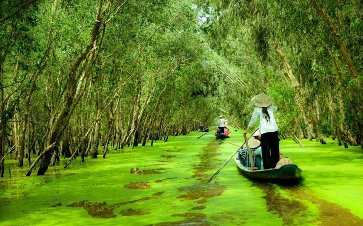 Wanderlust Tips Magazine | 8 must-see places in The Mekong Delta in the morning