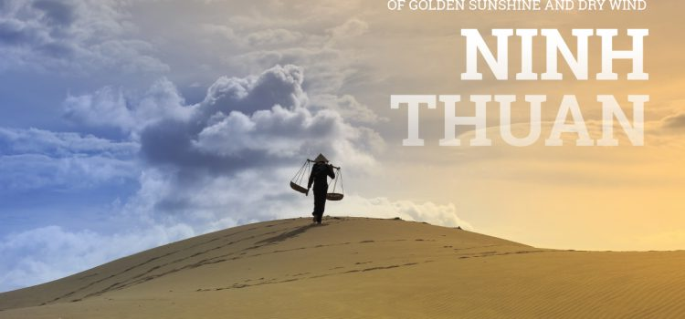 Ninh Thuan: Nostalgia for the land of golden sunshine and dry wind