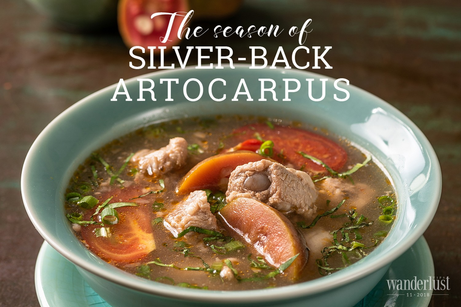 Wanderlust Tips Magazine | The season of Silver-Back Artocarpus