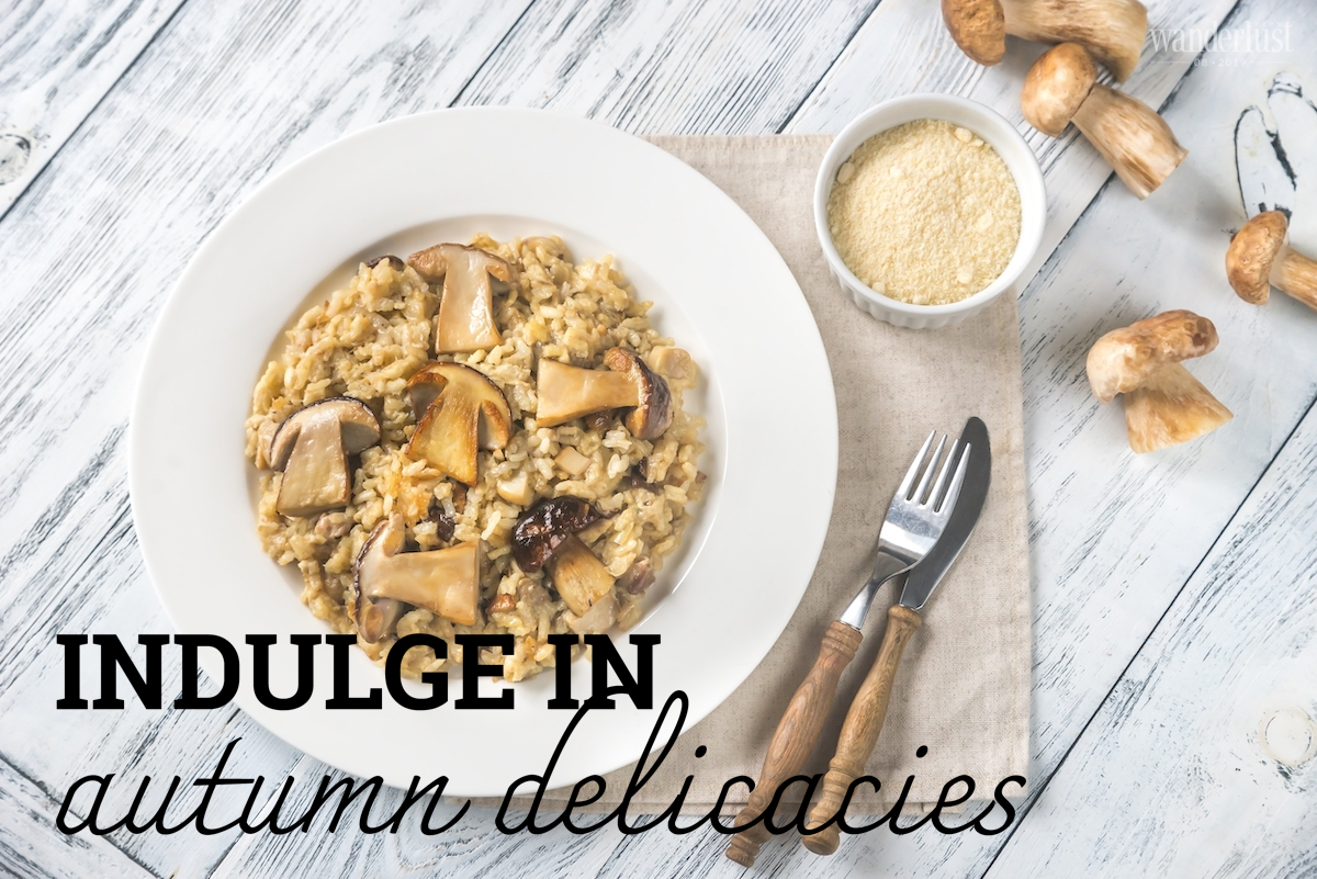 Wanderlust Tips Magazine | Indulge in autumn delicacies