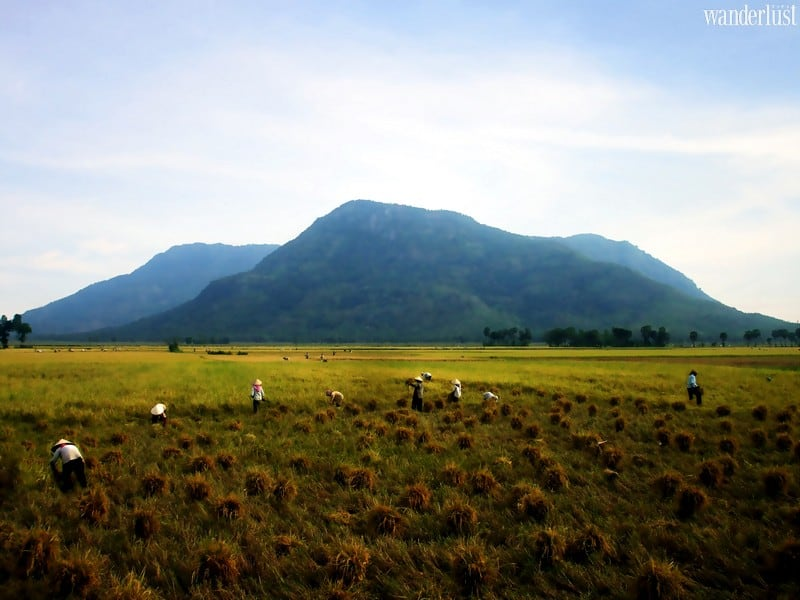 Wanderlust Tips Magazine   An essential guide to An Giang