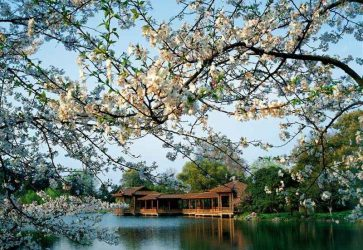 Wanderlust Tips Magazine | Hangzhou: Heaven on Earth