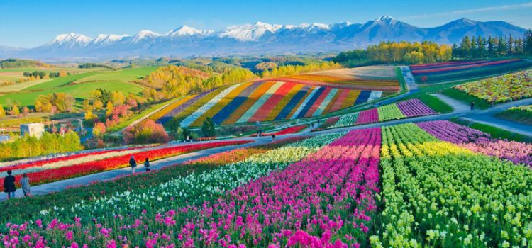 Things to see and do in Hokkaido, Japan