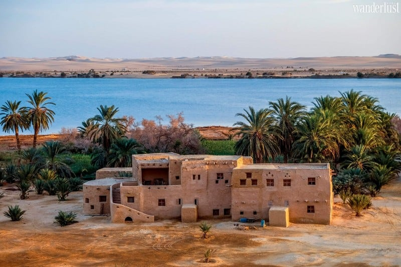 Wanderlust Tips Magazine | Siwa: A tranquil oasis sitting at the heart of the Egyptian desert