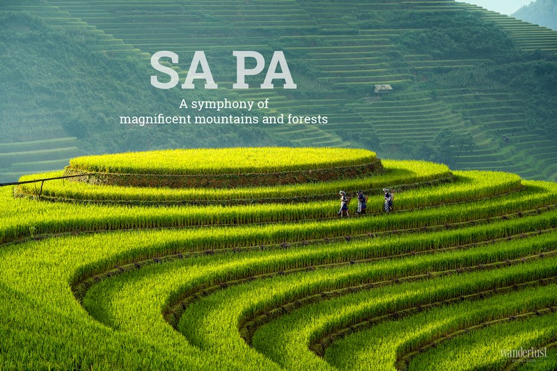 Wanderlust Tips Magazine | Sa Pa: A symphony of magnificent mountains and forests