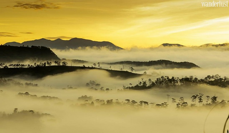 Wanderlust Tips Travel Magazine | Top 5 incredible experiences Lam Dong Province